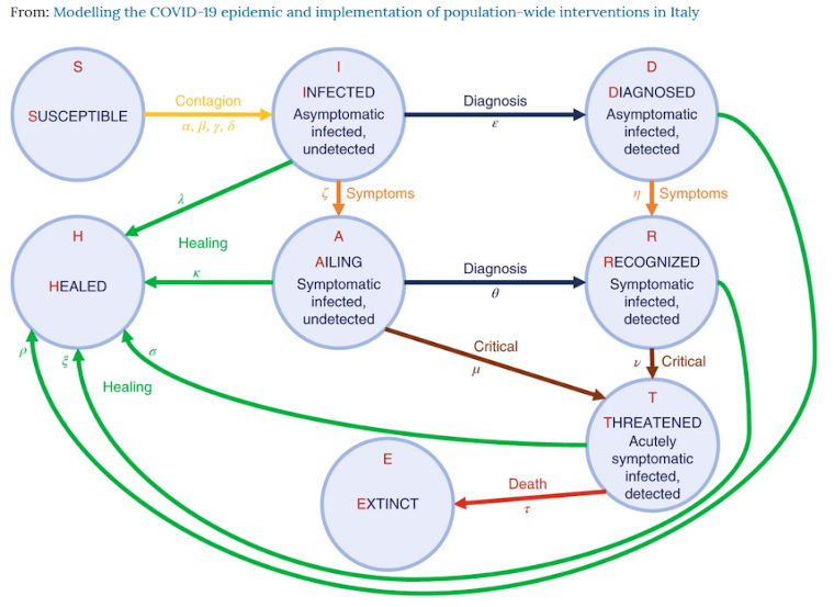 modelling the covid-19 epidemic