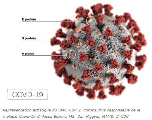 Représentation artistique COVID-19