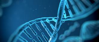 Séquencer l'ADN à très haut débit