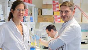 Equipe de recherche sur les sarcomes